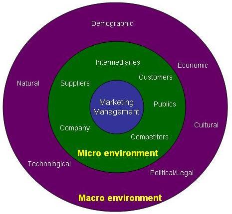Marketing Environment: Explanation, Components, & Importance