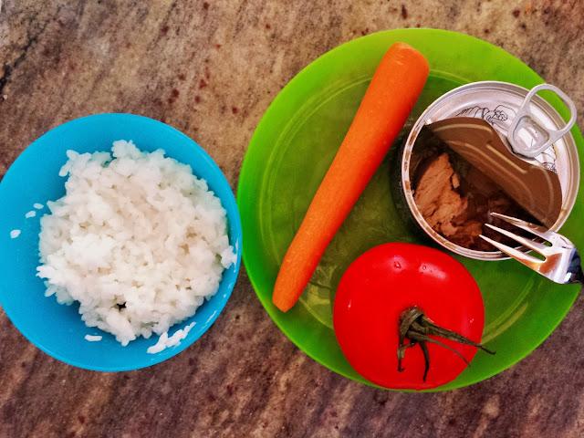 Můj fialový svět První příkrm Rýže, mrkev, rajče, tuňák recept