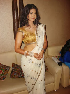 Divya_Dwivedi_Hot_Saree_Pics