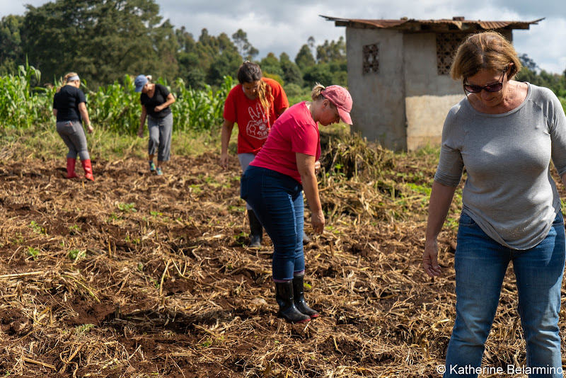 Sowing Corn Volunteering in Kenya with Freedom Global