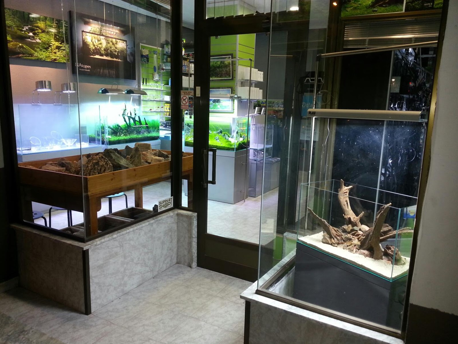 AQUAOASIS: Aquascape Gallery NAscapers Spain