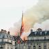 INSOLITE : Les abeilles de notre dame de Paris ont survécus aux flammes !
