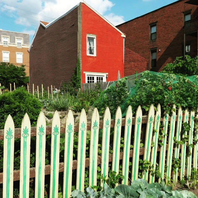 Community Garden in the Mexican War Streets Neighborhood of Pittsburgh