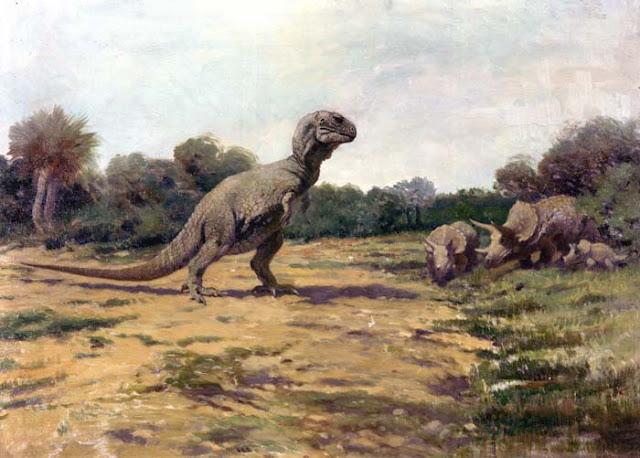 Dinozaury triceratops tyranozaur