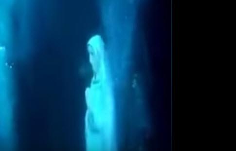 شاهد تمثال العذراء مريم في قلب المحيط الهندي مصر الان