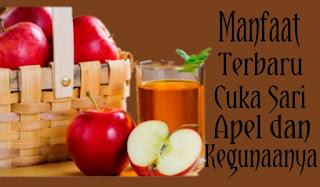 10 Manfaat Terbaru Cuka Sari Apel dan Kegunaannya dalam Kehidupan Sehari-hari !