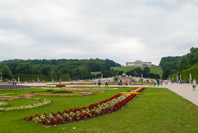 roses and flowers in the Schoönbrunn Palace in Vienna, Austria