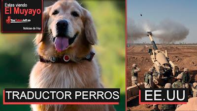 Traductor de mascotas, noticias, el muyayo, ultimas noticias