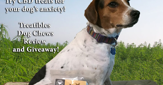 How hemp dog treats from Treatibles can ease summer stress, REVIEW and GIVEAWAY