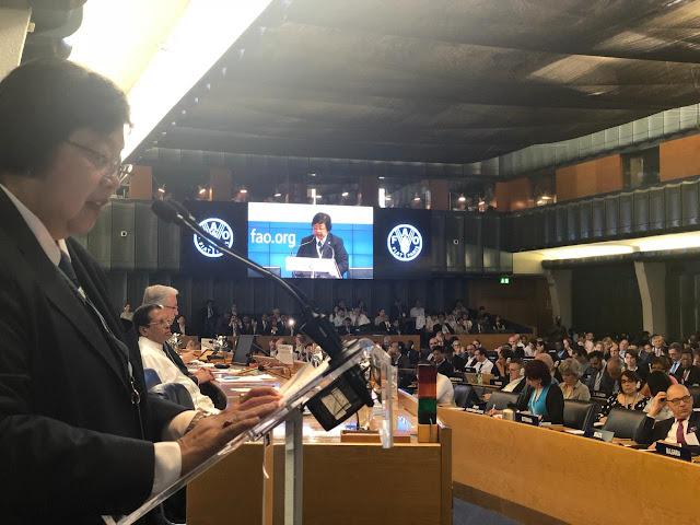 Menteri LHK Paparkan Berbagai Capaian SDGs Sektor Kehutanan di Forum FAO