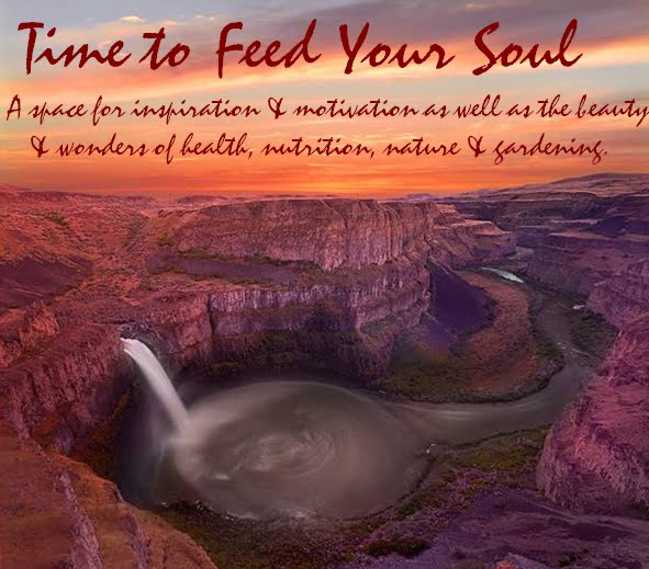 Feed Your Soul Too: Time To Feed Your Soul: Intelligent Quotes