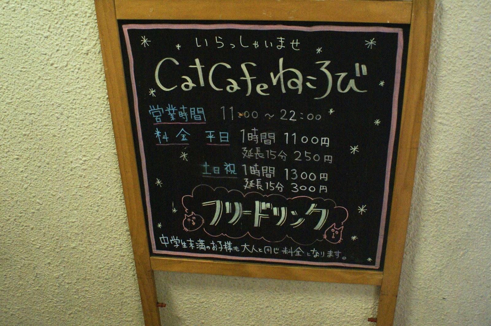 neko cat café nekorobi ikebukuro tokyo japan