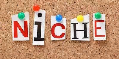 Nah, untuk itu, Anda mesti mengenali cara membuat Niche blog bagi pemula secara mudah :