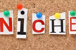Cara Menentukan Niche Blog Yang Baik Dan Benar