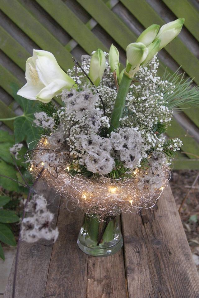 Amaryllis, gewachste Clematis und Schleierkraut mit Lichterkette