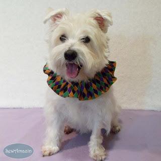 Mardi Gras Dog Scrunchie Ruffle, Harlequin, Purple, Gold, Green