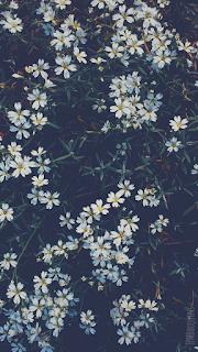 fond d'écran smartphone fleurs printemps