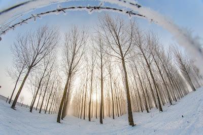 Csíkszereda, fagy, Hargita megye, időjárás-jelentés, Székelyföld, Gyergyóalfalu
