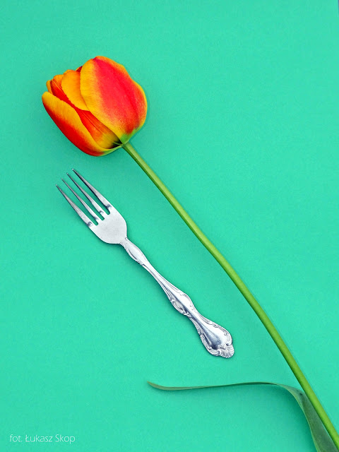 jadalne kwiaty tulipana