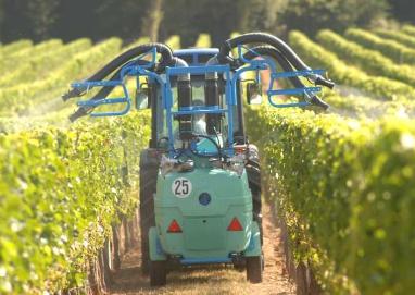 Prestation de service - Traitement de la vigne ...