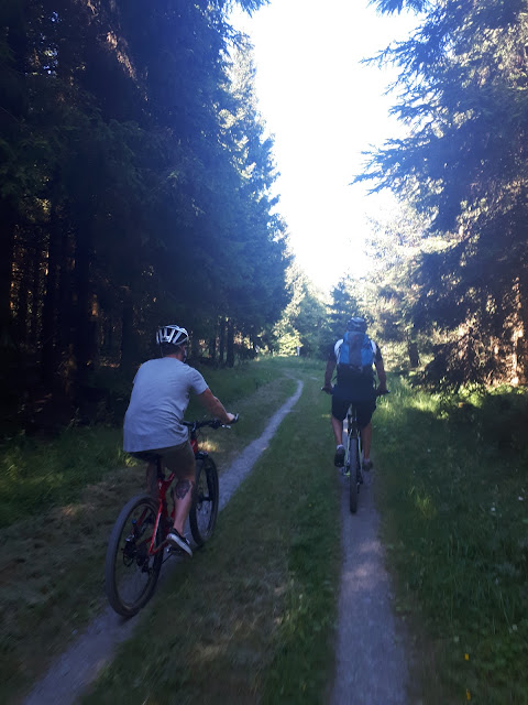 Mountain biking around Erlebnisberg Kappe, Winterberg, Sauerland, NRW, Germany
