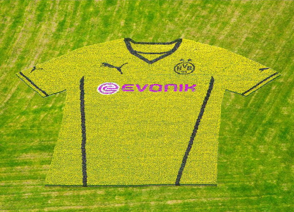 Close-up shot of the new Dortmund home jersey made out of 80,645 flowers