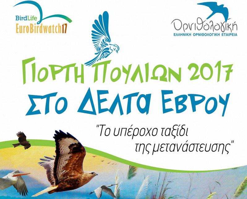 Πανευρωπαϊκή Γιορτή Πουλιών 2017 στο Δέλτα του Έβρου
