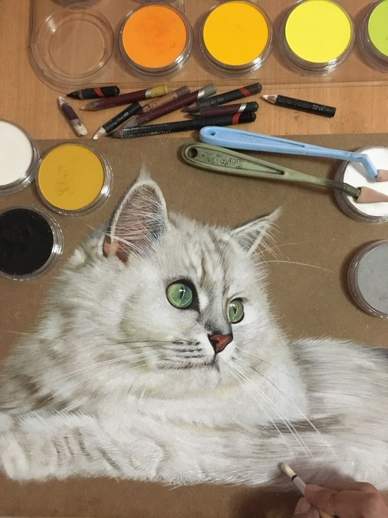 10-MaoMao-The-Cat-Ivan-Hoo-Animals-Translated-to-Realistic-Drawings-www-designstack-co