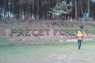 Spot menarik di tempat parkir Hutan Pinus Precet, Wagir, Malang
