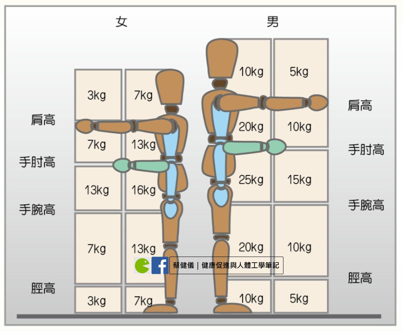 蔡健儀|健康促進與人體工學筆記: 工作、搬重物造成下背痛?