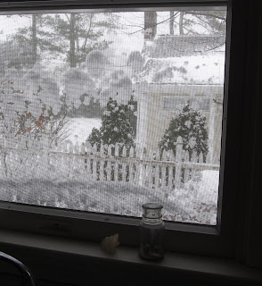kitchen window covered in snow