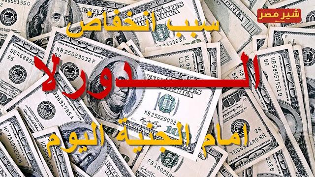 سعر الدولار اليوم | سعر الدولار اليوم ينخفض امام الجنية المصري تعرف على السبب......