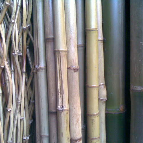 Tinuku Sahabat Bambu studio processing bamboo as high-quality products and strong as steel for building materials