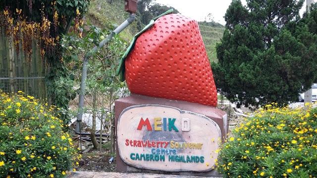 Meiko Strawberry Souvenir Centre