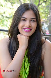 Telugu Actress Prasanna Stills in Short Dress at Inkenti Nuvve Cheppu Press Meet Stills  0136.JPG