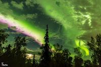 Zorza polarna sfotografowana 13.09.2017. Autor: Sacha Layos. Fairbanks, Alaska, USA