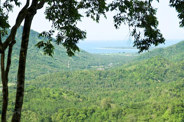 Lombok, pulau lombok, lombok island, indonesia, travel, travelling, wisata, jalan- jalan, pantai, monyet, hutan pusuk
