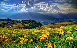Karadeniz Ruhunu En İyi Yaşatan Yerler Giresun Yayla Görsel ile ilgili görseller Giresun Yayla Haberleri Giresun Yayla Son Dakika Gelişmeleri Ziyaret Etmenizi Bekleyen, Cennetin Yeryüzündeki Yansıması Giresun Yaylaları Giresun Yaylaları Gezilecek Yerler Tertemiz havası ve Muhteşem Doğa Oksijene Doyacağınız Güzide Karadeniz Yaylası