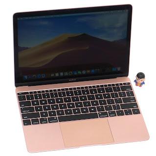 MacBook Retina Early 2016 SSD 256 Rose Gold Bekas
