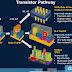 Η TSMC βάζει πλώρη για τα 3 νανόμετρα