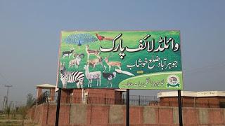 wild life safari park jauharabad khushab