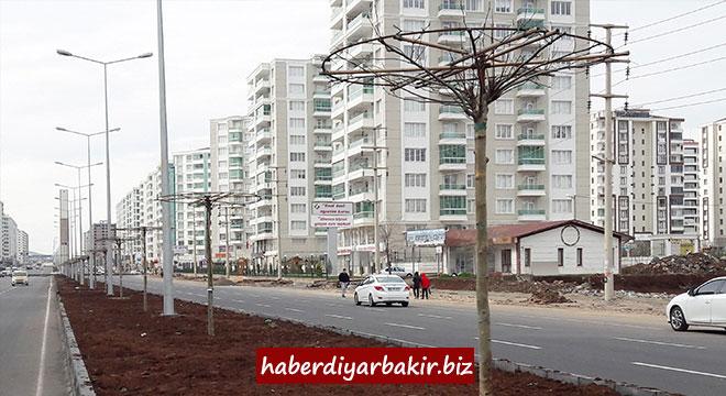 Diyarbakır Kayapınar Fırat Bulvarı artık daha yeşil olacak