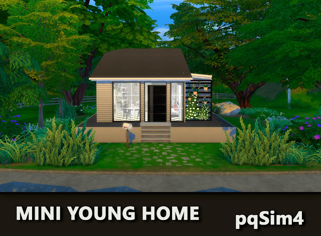 Mini Young Home.Exterior 2