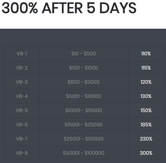 Инвестиционные планы ValleyBit 2
