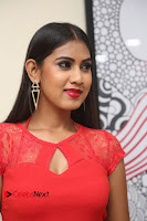 Actress Model Honey Pictures at Anoos Franchise Salon and Clinic Launch  0009.JPG