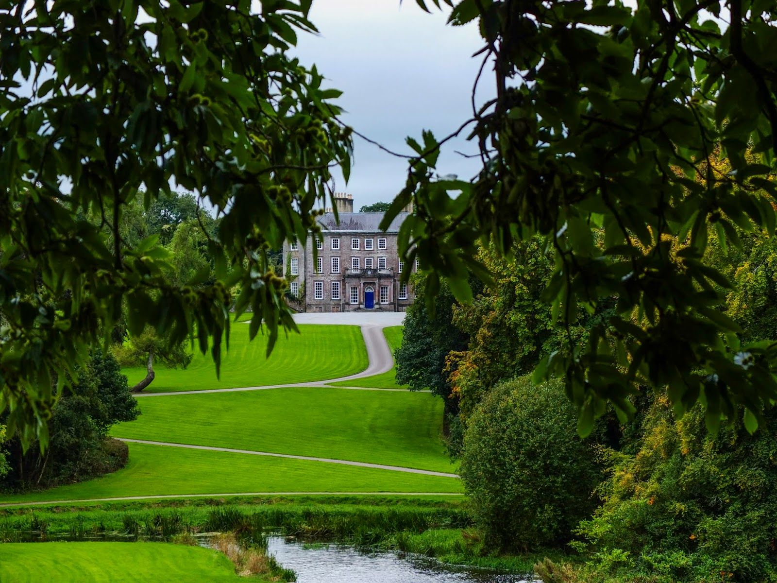 View of the Doneraile Castle behind branches of a chestnut tree.