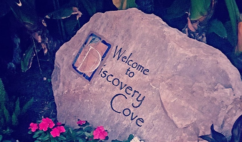 A Day at Discovery Cove.... and Giveaway time!