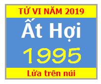 Tử Vi Tuổi Ất Hợi 1995 Năm 2019 Nam Mạng - Nữ Mạng