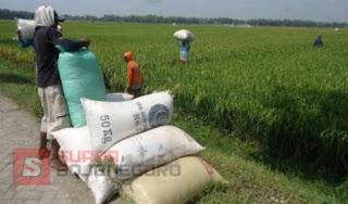 Menanti Keberkahan  dari Swasembada Pangan dan Energi di Kabupaten Bojonegoro