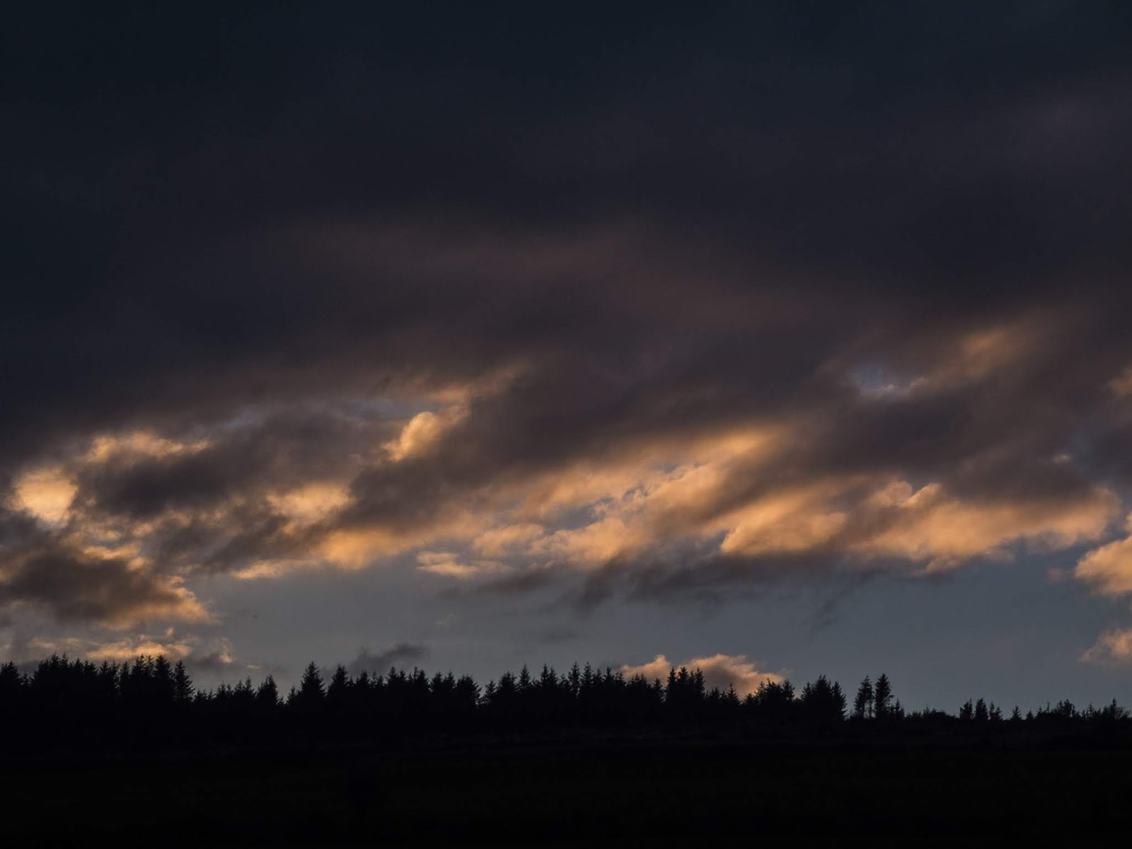 Dark sunset clouds over a forest in the Boggeragh Mountains in North Cork.